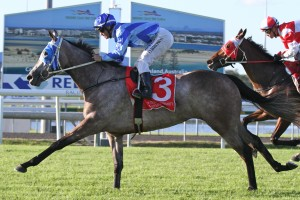 Lady Echelon runs well in rain-affected going so the Recognition Stakes at Doomben will be right up her alley.