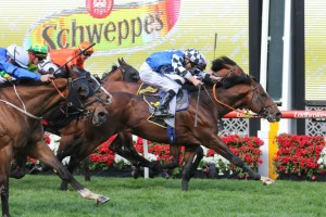 Chief Ironside beats the locals in Crystal Mile