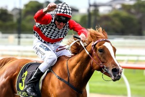 Jockey Brad Rawiller believes Akzar is in prime position for a successful step-up in class in the 2014 Doomben Cup