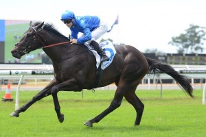 Inner Circle will sport Godolphin blue, pictured here on Exosphere, during the 2015 Spring Carnival. Photo: Steve Hart