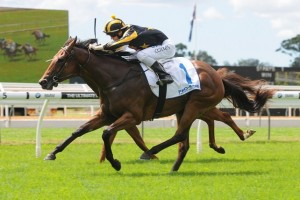 Alpha Miss upset a number of Golden Slipper contenders to win the Lonhro Plate at Warwick Farm on Saturday.