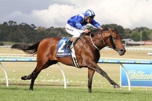 Almoonqith savaged the line for fourth in the Group 1 Caulfield Cup over the weekend. Photo: Ultimate Racing Photos